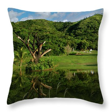 Golfito Desde La Laguna Throw Pillow by Bibi Rojas