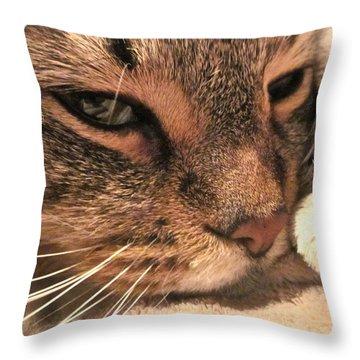 Goliath Throw Pillow