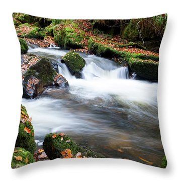 Golitha Falls IIi Throw Pillow by Helen Northcott