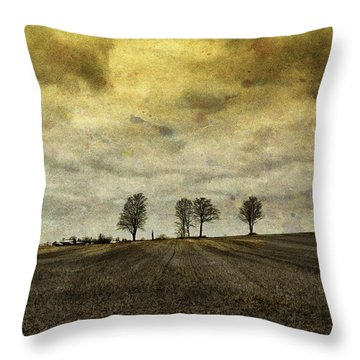 Gone Are Our Days Of Happiness.... Throw Pillow
