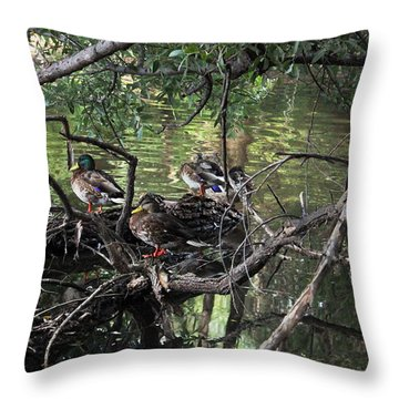 Gone Duck Hunting Throw Pillow