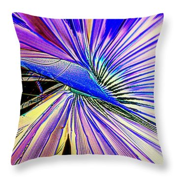 Throw Pillow featuring the photograph Gone Gone Forever by Antonia Citrino