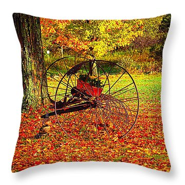 Gone With The Wind Throw Pillow by Diane E Berry