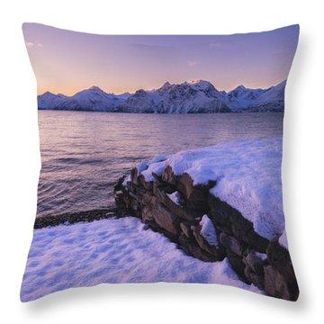 Good Afternoon Throw Pillow