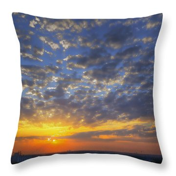 Good Day Sunshine Throw Pillow by Joan Carroll