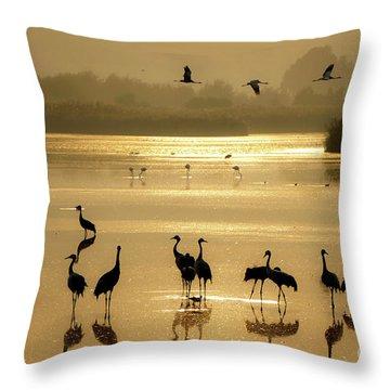 Good Morning Chula Lake Throw Pillow