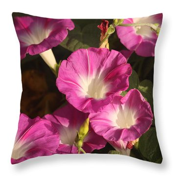Throw Pillow featuring the photograph Good Morning, Glory by Sheila Brown