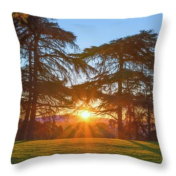 Good Morning, Good Morning Throw Pillow