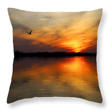 Good Morning Throw Pillow by Judy Vincent