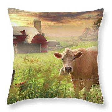 Throw Pillow featuring the photograph Good Morning by Lori Deiter