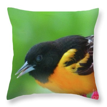 Good Morning Mr. Oriole Throw Pillow