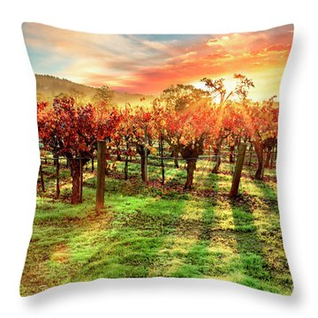 Good Morning Napa Throw Pillow