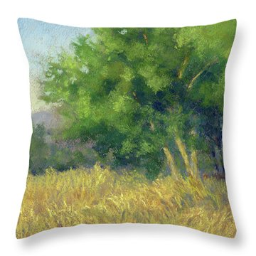 Good Morning Summer Throw Pillow
