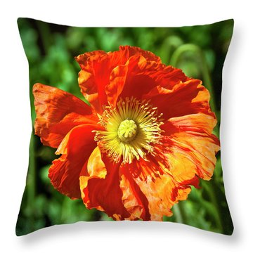 Good Morning Sunshine Throw Pillow by Tamyra Ayles