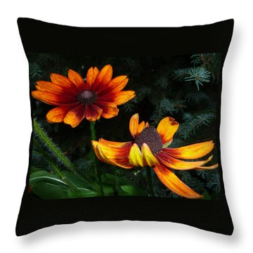 Good Night Susan - Botanical Throw Pillow