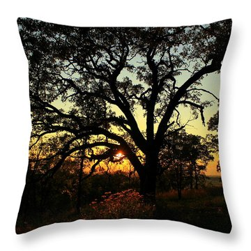 Throw Pillow featuring the photograph Good Night Tree by Viviana  Nadowski