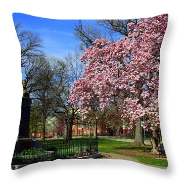 Goodale Park In The Spring Throw Pillow by Laurel Talabere