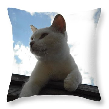 Goodbye Blue Sky Throw Pillow