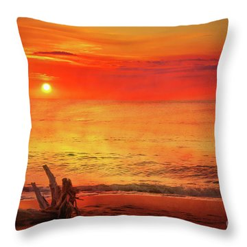 Throw Pillow featuring the digital art Goodbye Day by Randy Steele