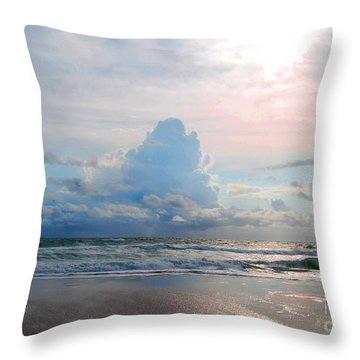 Goodbye Storm Throw Pillow by Linda Mesibov