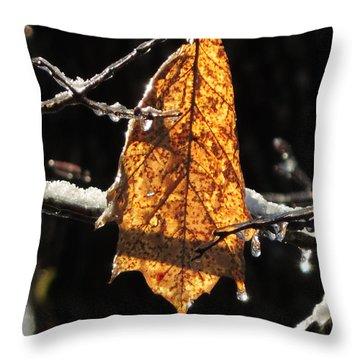 Goodbye To Autumn Throw Pillow
