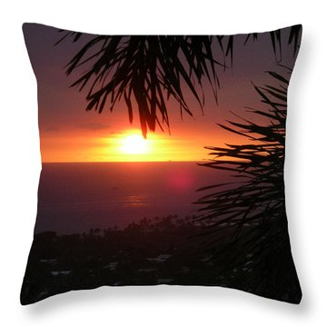 Goodnight - Final In A Series Of Four Throw Pillow