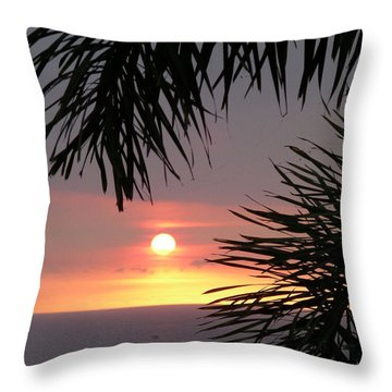 Throw Pillow featuring the photograph Goodnight - First In A Series Of Four by Karen Nicholson