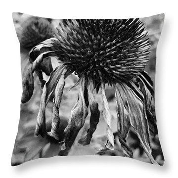 Goodnight Gracie Throw Pillow by Trish Hale