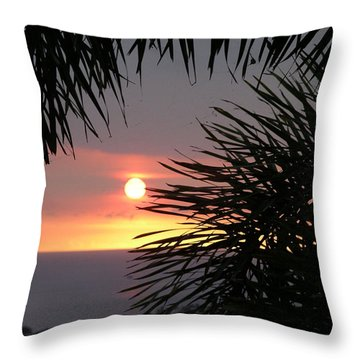 Throw Pillow featuring the photograph Goodnight - Second In A Series Of Four by Karen Nicholson