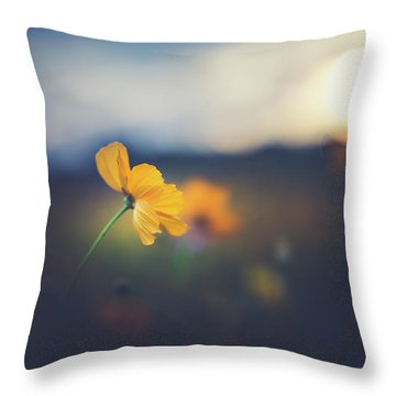 Throw Pillow featuring the photograph Goodnight Sun by Shane Holsclaw