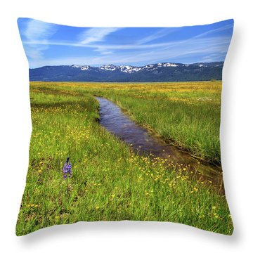 Throw Pillow featuring the photograph Goodrich Creek by James Eddy