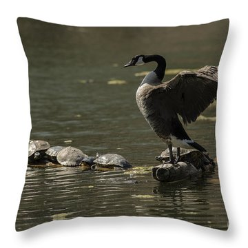 Goose And Turtles Throw Pillow