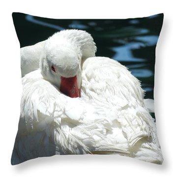 Goose Feather Siesta Throw Pillow