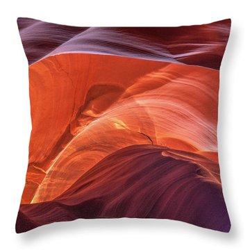 Goose In Antelope Throw Pillow