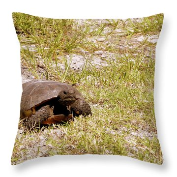 Gopher Turtle Throw Pillow by Terri Mills