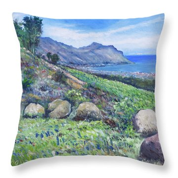 Gordon's Bay Cape Town South Africa Throw Pillow by Enver Larney