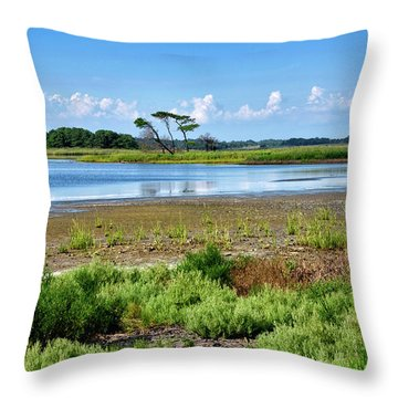 Throw Pillow featuring the photograph Gordons Pond At Cape Henlopen State Park - Delaware by Brendan Reals