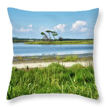 Throw Pillow featuring the photograph Gordons Pond - Cape Henlopen State Park - Delaware by Brendan Reals