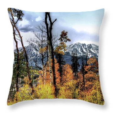 Gore Range Throw Pillow by Jim Hill