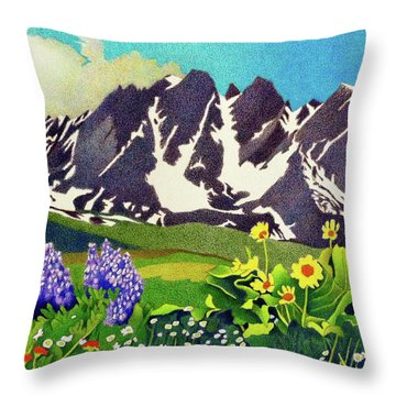 Gore Range Wildflowers Throw Pillow