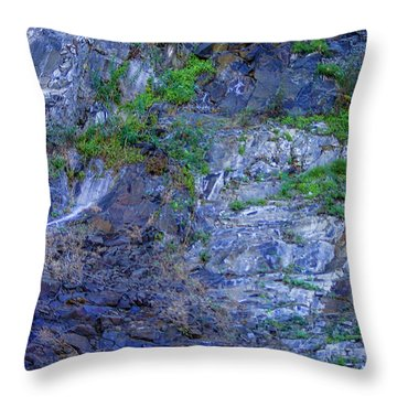 Gorge-2 Throw Pillow by Dale Stillman