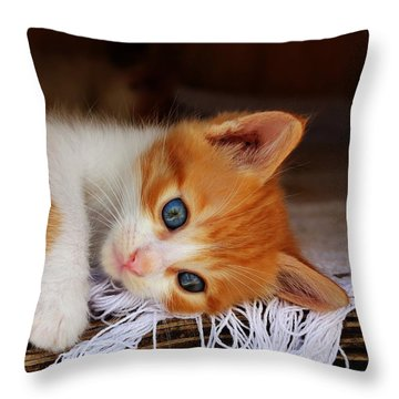 Gorgeous Blue Eyes Throw Pillow