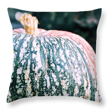 Gorgeous Gourd Throw Pillow by JAMART Photography