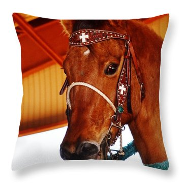 Gorgeous Horse And Bridle Throw Pillow