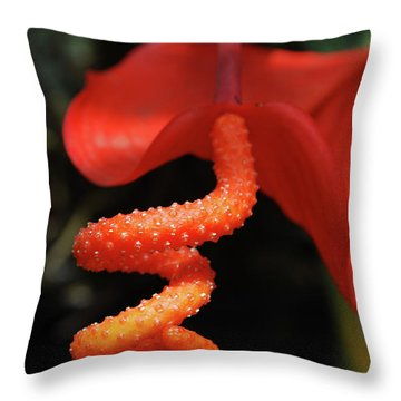 Gorgeous Orange Tropical Flower Blossom Throw Pillow