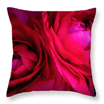 Gorgeous Sisters Throw Pillow by Rachel Mirror