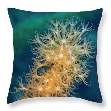 Gorgonian Detail Throw Pillow