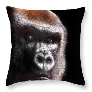 Gorilla ... Kouillou Throw Pillow by Stephie Butler
