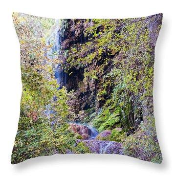Gorman Falls At Colorado State Park IIi - San Saba Texas Hill Country Throw Pillow