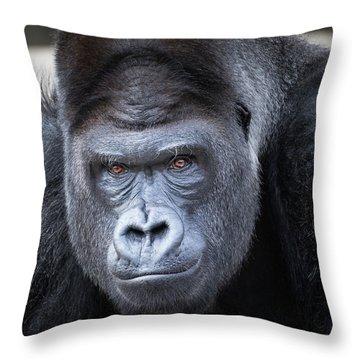 Gorrilla  Throw Pillow